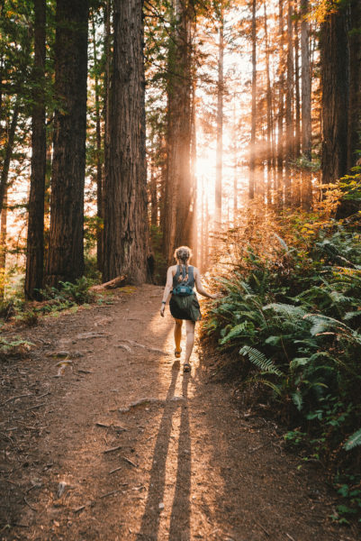 Woman walking through a dense forest with sunlight streaming through the tress ahead